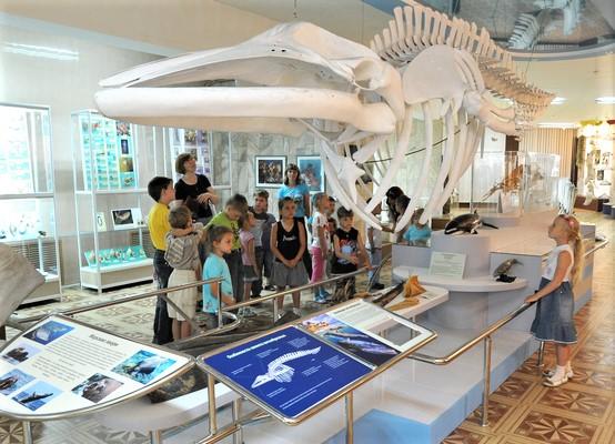 Музей Института биологии моря.