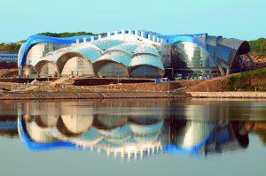 Большое путешествие в Приморский океанариум @ г. Владивосток